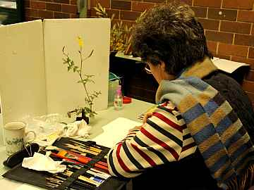 Kerrie Nogrady at work (Photo: Alan Munns)