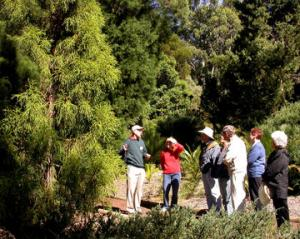Voluntary Guide and visitors at the ANBG (Photo: Alan Munns)