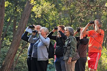 Breakfast with the Birds in the ANBG (Photo: Alan Munns)