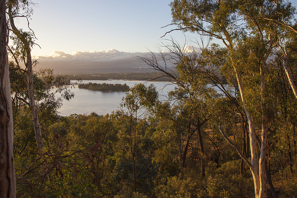 View from the Lookout at the Bushland Nature Trail