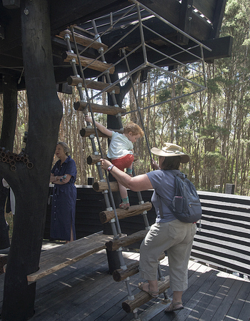 First child climbs the ladder to the top