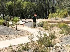Planting Banksias - Photo: Helen Musa