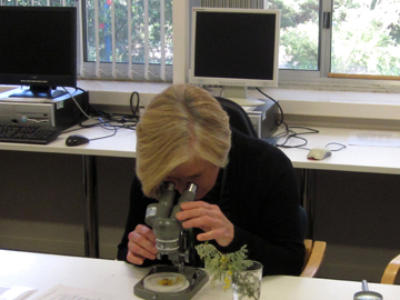 Plant identification in progress at the Botanical Resource Centre