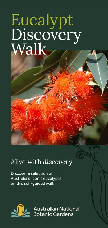 Cover of updated Eucalypt Discovery Walk self-guide brochure