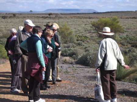 Fascinating walks in the wonderful Arid Lands Botanic Garden. Photo: Alan Munns