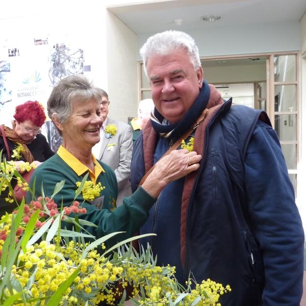 Wattle for Wattle Day (Photo: Barbara Podger)