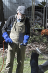 Jim Gould at work charring. Photo : Bill Hall