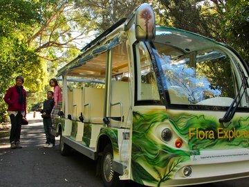 Flora Explorer, a Friends' project in 2012 (Photo: Alan Munns)